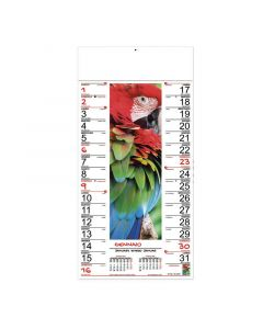 COLOURS - Bildkalender Fantasie